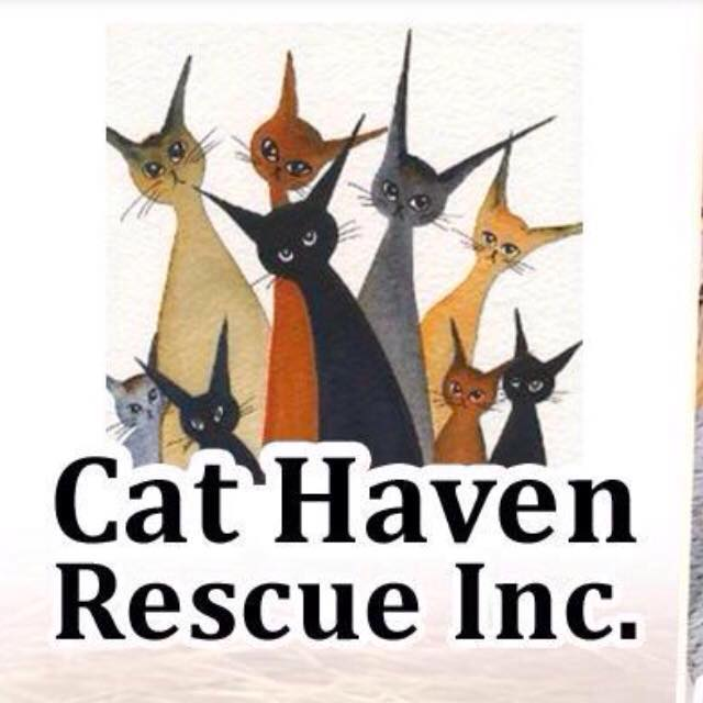 Cat Haven Rescue Inc.